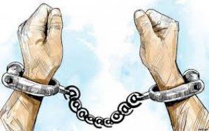 संगठित अपराध मुद्दामा फरार व्यक्ति पक्राउ